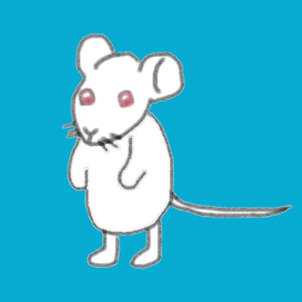 ネズミ_ 1