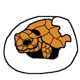 かめ卵イラスト2-1沖野