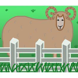 ベーちゃん羊ウェブ