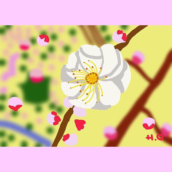うめの花Web用沖野